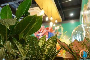 đèn the ayatt coffee - địa điểm sống ảo tại quảng bình