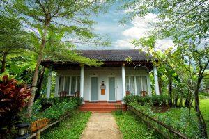 view cottage room chày lập homestay & resort